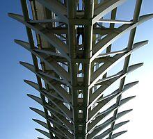 Rail Lines - Venice by Marilyn Harris
