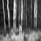 Frame of Mind by LukeAustin