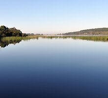 Lysterfield Lake on a calm day by kathiemt