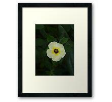 """""""WHITENESS"""" Framed Print"""
