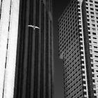 Wings of Desire BW by Andy Freer