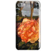 Tuscan Roses iPhone Case/Skin