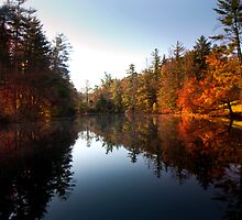Mirrored Lake in Fall by Anthony M. Davis