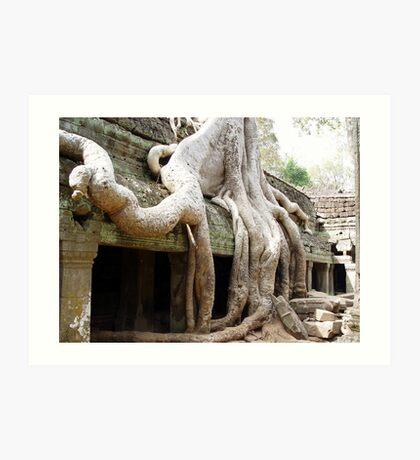 Cambodia. Angkor Wat , Siem Reap 51 Art Print