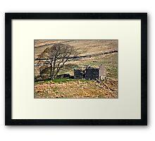 Dentdale Ruin - Cumbria Framed Print