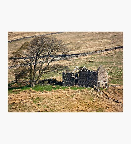 Dentdale Ruin - Cumbria Photographic Print