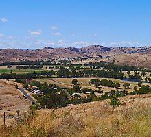 Near Gundagai, NSW, Australia by Margaret  Hyde