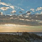 Beachscape No.5 by Scott Evers