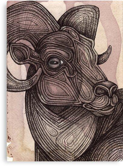 The Ram by Lynnette Shelley