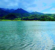 Silver Water by Daidalos