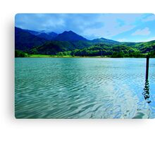 Silver Water Canvas Print