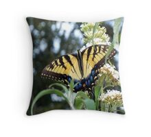 Butterfly Lunching Throw Pillow