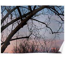 Sun Setting on Winter Poster