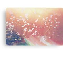 Cherry Blossom Canvas Canvas Print