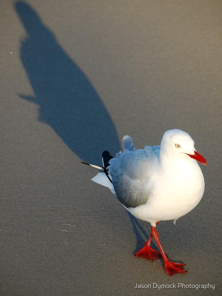 The Bird by Jason Dymock Photography