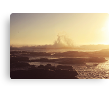 its like gold dust Canvas Print