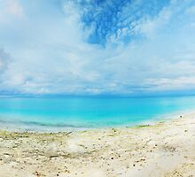 Tropical panorama by MotHaiBaPhoto Dmitry & Olga