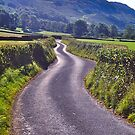 The Road to Beckfoot by David Davies