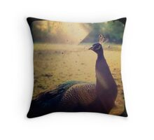Peacock Under The Sun Throw Pillow