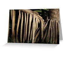 Pandanas Roots Greeting Card