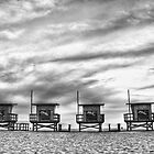 Venice Beach Huts by Firesuite