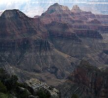 Truely The Grand Canyon by Bellavista2