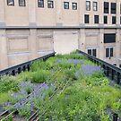 Tracks to Nowhere,High Line, New York City by lenspiro
