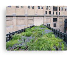 Tracks to Nowhere,High Line, New York City Canvas Print