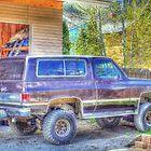 Backyard Blazer by Debbie Roelle