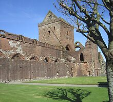 Sweetheart Abbey by Conor Gilmour