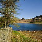 Across The Tarn by John Hare