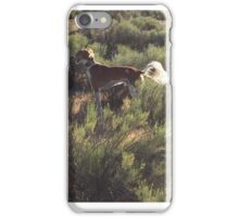 Malachi iPhone Case/Skin