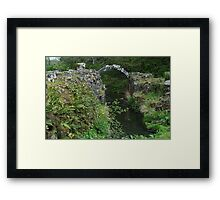 The River Skell 2 Framed Print