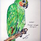Green Parrot by Gary Price
