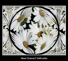 White Daisy ( Polar Coordinates Special Effect ) by Rose Santuci-Sofranko