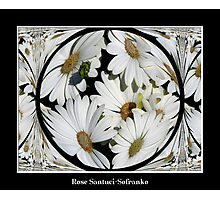 White Daisy ( Polar Coordinates Special Effect ) Photographic Print
