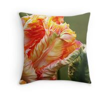 Oh the Colors Throw Pillow