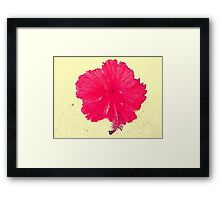 A Tropical Hi Framed Print