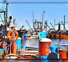New Bedford harbor life by Poete100