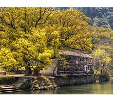 Tree by the River Photographic Print