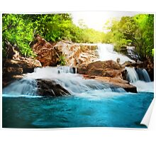 Waterfall in rain forest Poster