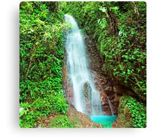 Waterfall in rain forest Canvas Print