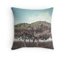 How Many Sunsets Throw Pillow