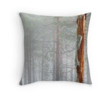 6.4.2011: Pinetree In the Misty Forest Throw Pillow