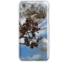 Flower Decay iPhone Case/Skin