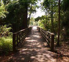 Bridge of Wonder by Photos  D'Argent