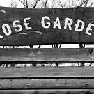 Rose Garden  by MylieLynn
