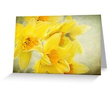 Spring gold Greeting Card