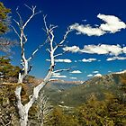 View from Cerro Campanario, Bariloche, Argentina by strangelight