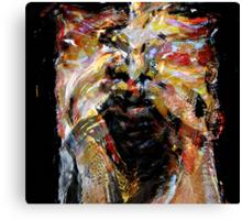 paint beauty #10..... Canvas Print